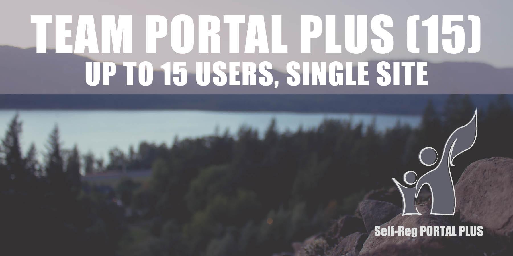 Team Portal Plus (15)