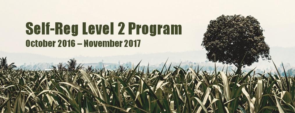 Self-Reg Level 2 Certificate - Cohort 1: October 2016 - November 2017