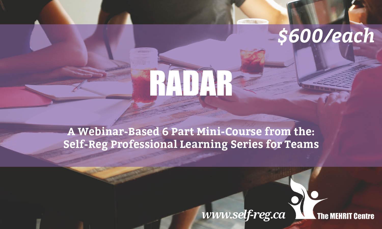 RADAR: A Professional Learning Series