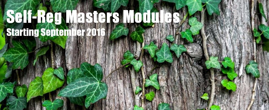 Self-Reg Masters Modules Certificate Program (30-Modules)