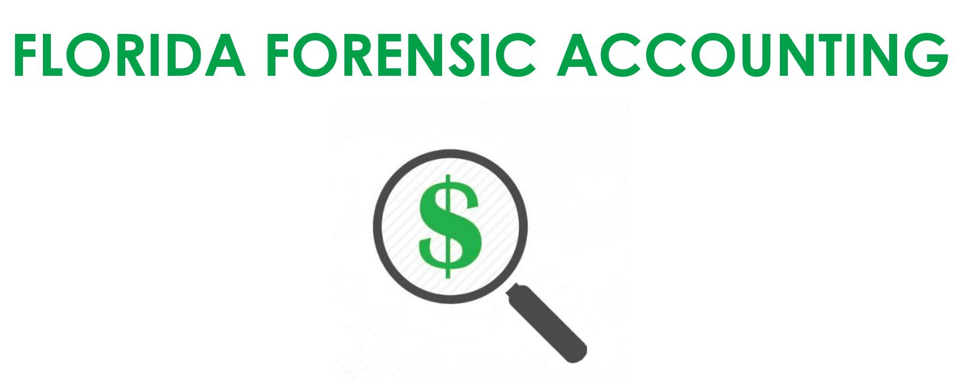 florida forensic accounting