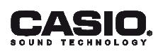 Casio ST Logo