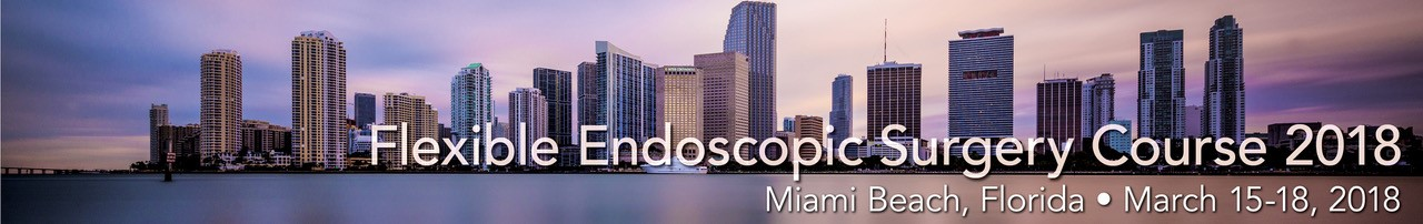 FLEXIBLE ENDOSCOPIC SURGERY