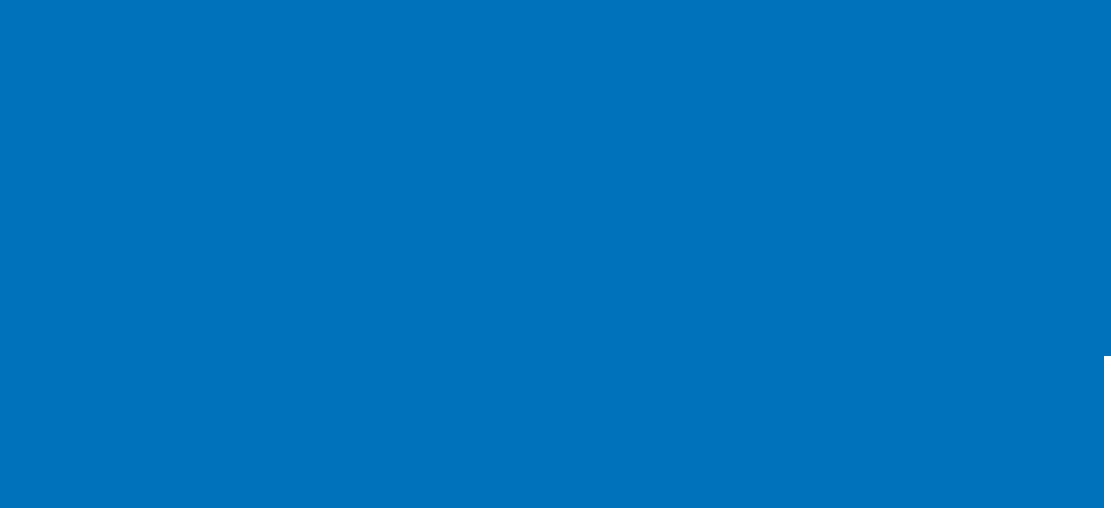 Brooks Logo IPS