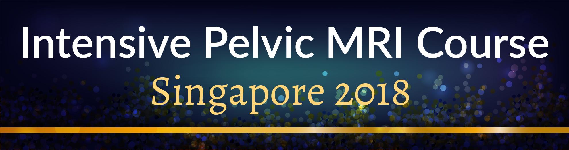 Intensive Pelvic MRI Course | Singapore 2018