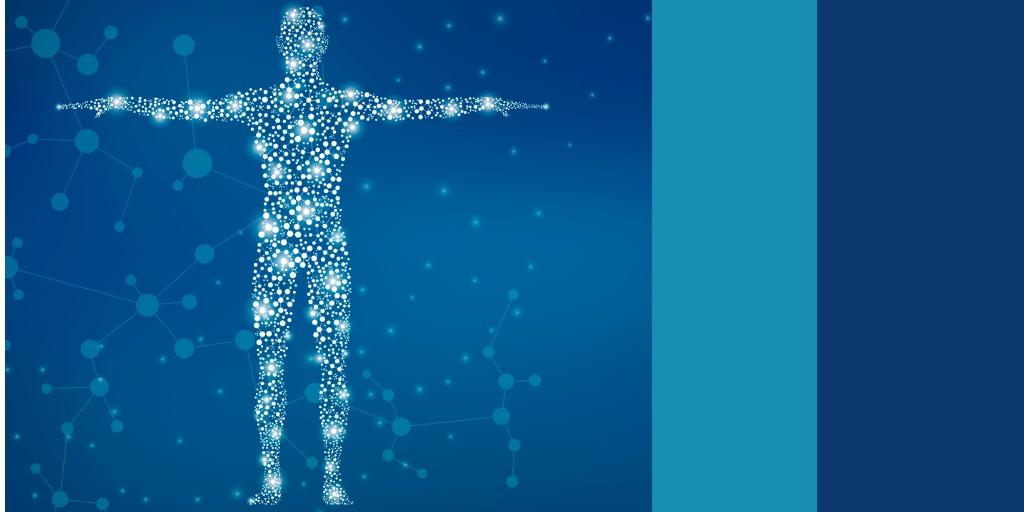 human body image shown as light dots