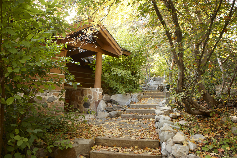 Lodging Steps -use this
