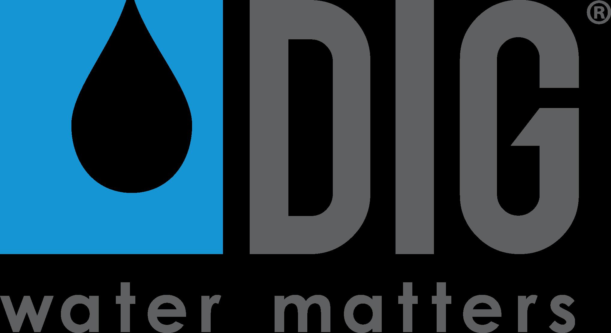 DIG_logo_w_tagline_blue