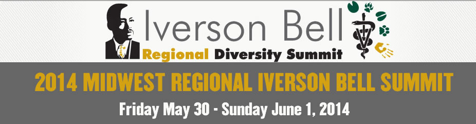 2014 Iverson Bell - Regional Diversity Summit