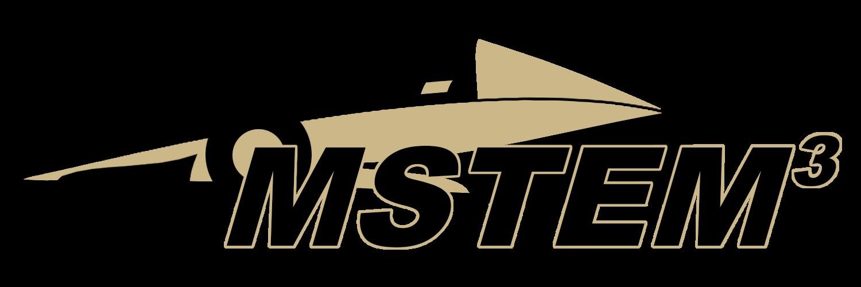 2018 MSTEM500