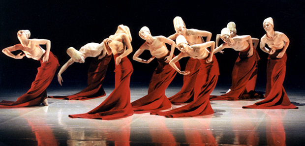 american dance festival header