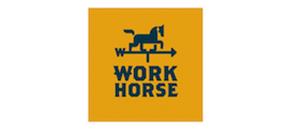 WorkHorse 300