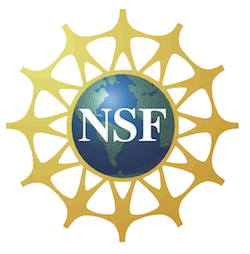 NSF-National-Science-Foundation-Logo