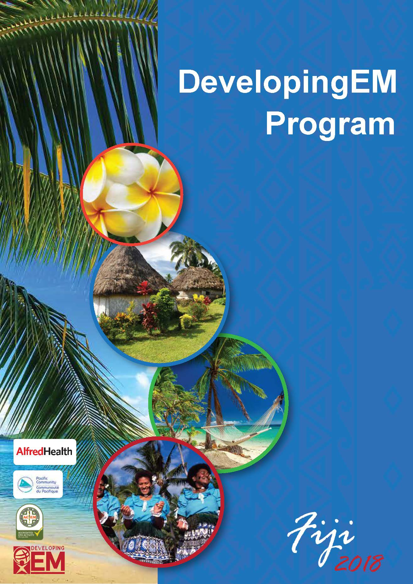 DEM Program cover