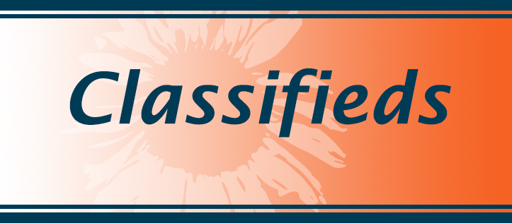 Classifieds_Inverted_Header