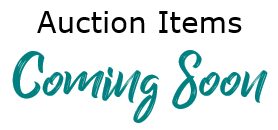 Auction-coming soon2