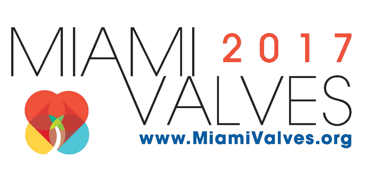 Miami_valves_logo_2017