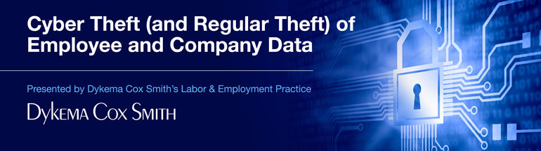 Cyber Theft (and Regular Theft) of Employee and Company Data