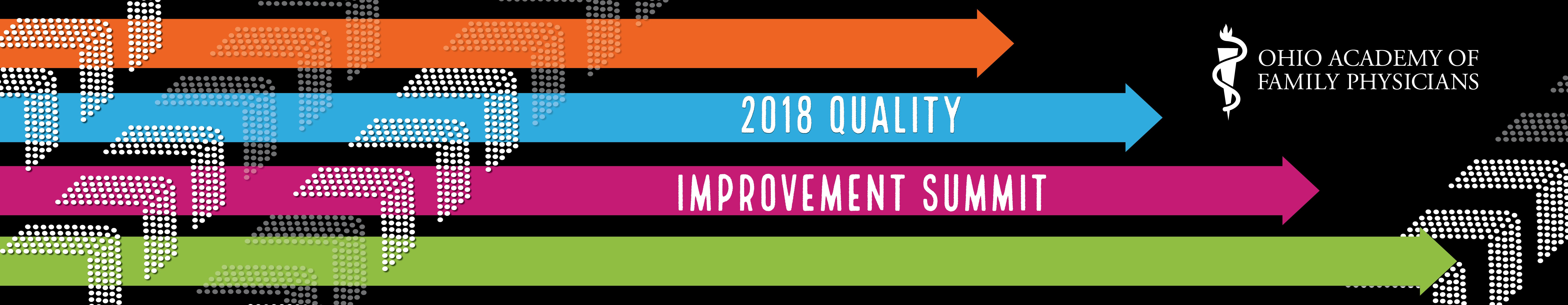 2018 Quality Improvement Summit