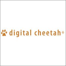 sponsors-digitalCheetah