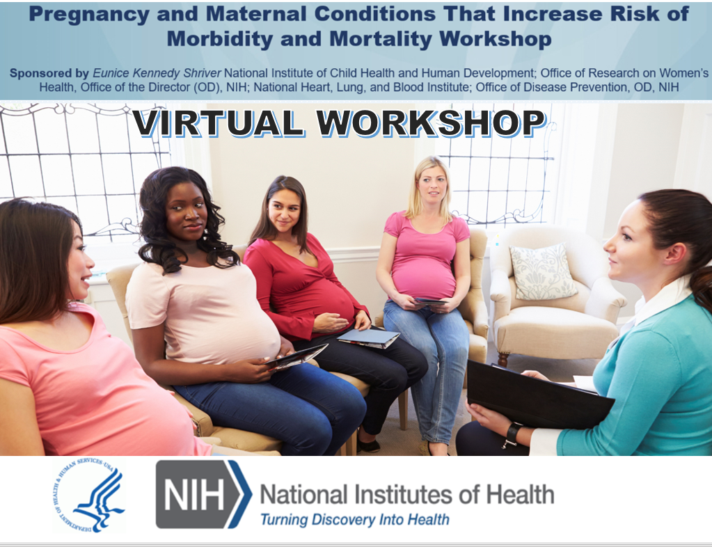Pregnancy and Maternal Conditions That Increase Risk of Morbidity and Mortality Workshop