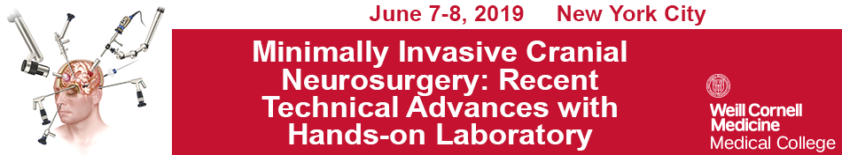 Minimally Invasive Cranial Neurosurgery: Recent Technical Advances with Hands-on Laboratory