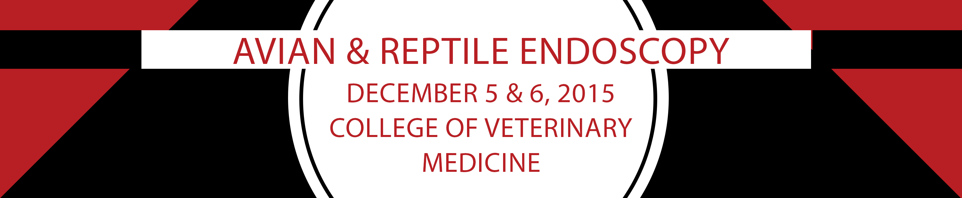 Avian & Reptile Diagnostic Endoscopy