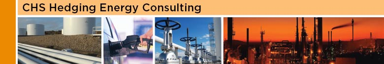 Energy Risk Management - Inver Grove Heights, MN