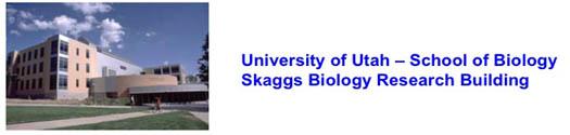 Skaggs1