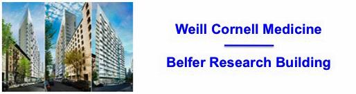 Weill_Belfer