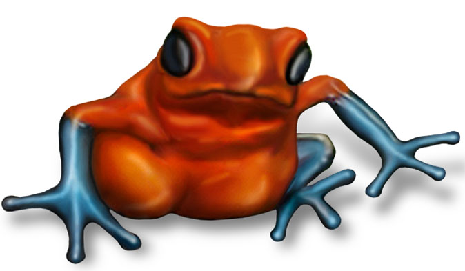 Frog_674px