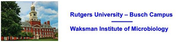 Rutgers_Waksman