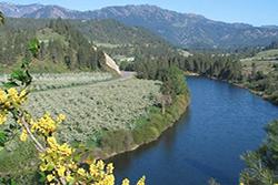 river 250x167