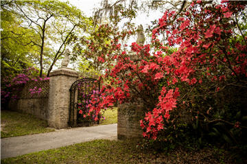 MSHS CHS - Brookgreen Gardens spring gate