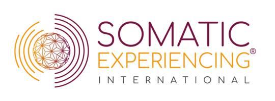 SE International Member Portal