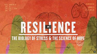 ResilienceDVDdocumentary_WednesdayBreakfastSession_400_225_200