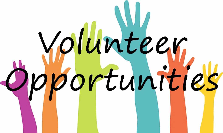 Volunteer-Opps111