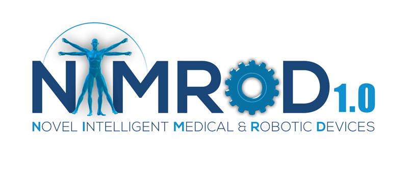NIMROD 1.0 logo