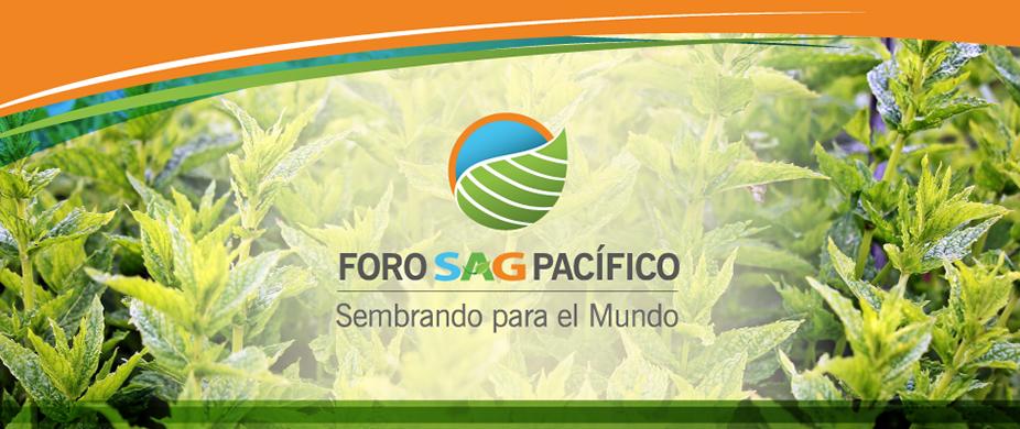 Banner-Foro-SAG