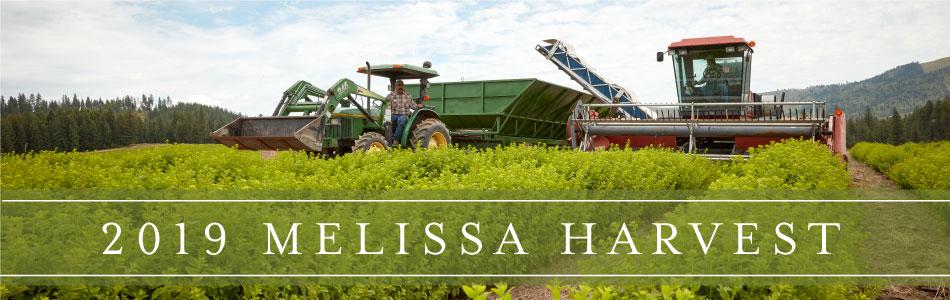 2019 Melissa Harvest
