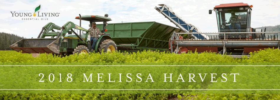 2018 Melissa Harvest
