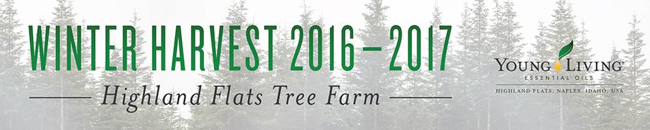 2017 Winter Harvest