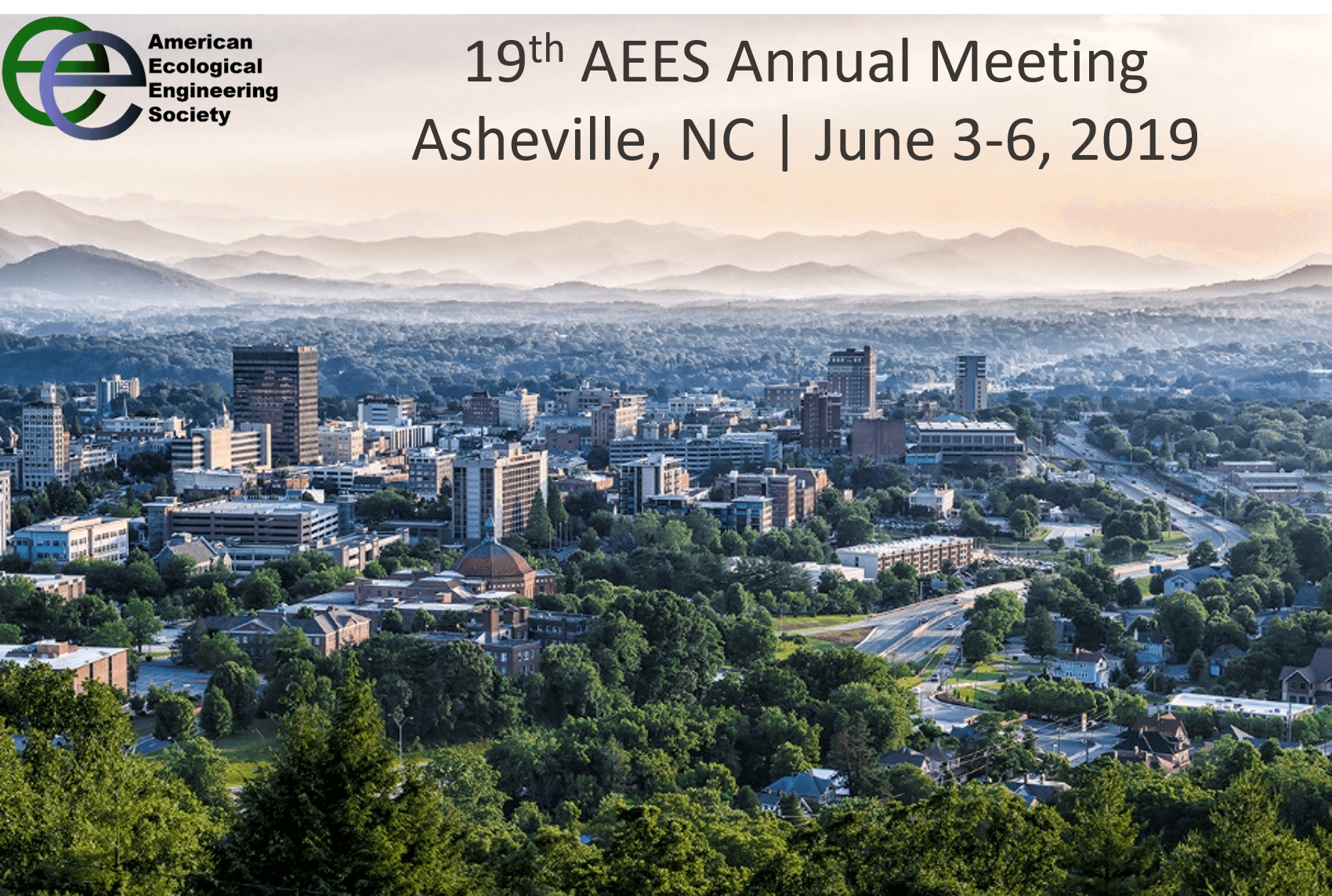 19th Annual AEES Meeting