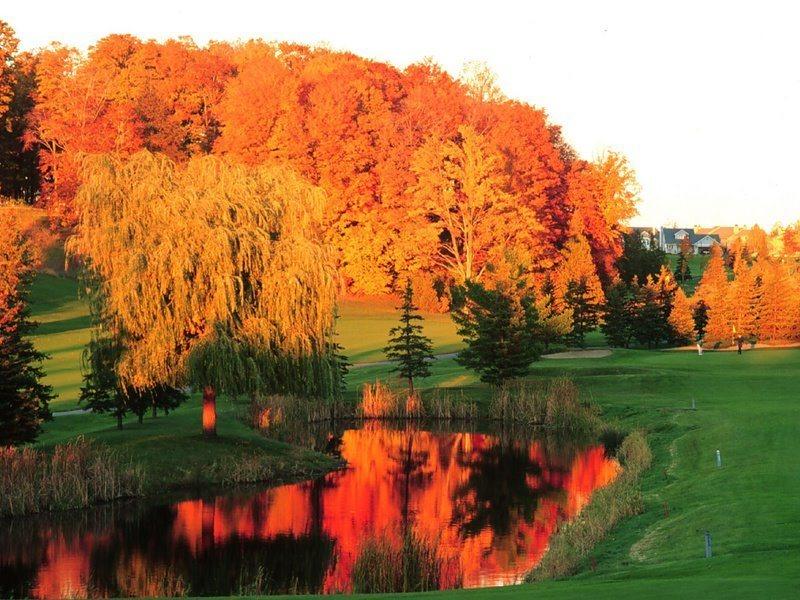 GTR Fall Colors