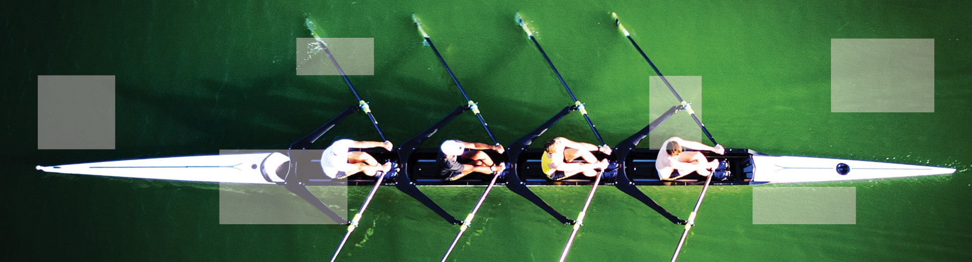 4 individuals rowing in water
