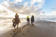 horseback-amelia