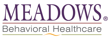 Meadows Behavioral Healthcare-350x125