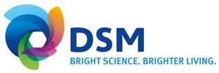 DSM-logo (2)