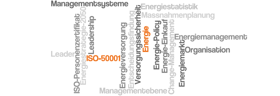 Energy Management Leader - In Kooperation mit der ZHAW