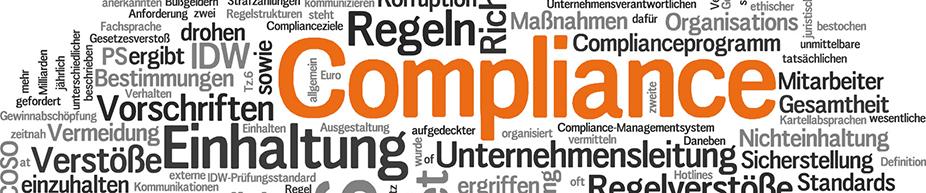 Risikobasiertes Compliance und Anti-Korruptions Management
